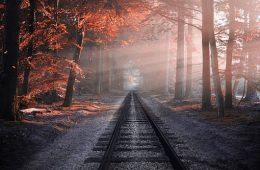 ferrovia nel bosco autunnale